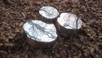 Mirrored logs by Lee Borthwick, 2012